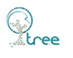 Castiglia srl Tree